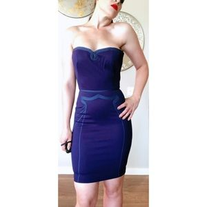 Zac Posen Blue Purple Strapless Bustier Dress SZ 4